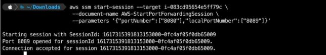 ssm and socat port forwarding in action