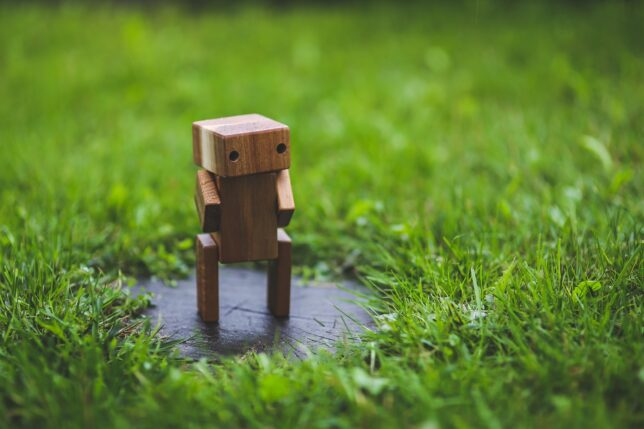 minecraft-like figure on the grass